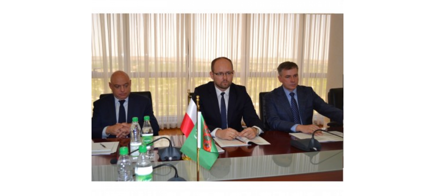 TURKMEN-POLISH POLITICAL CONSULTATIONS WERE HELD IN ASHGABAT